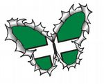 Ripped Torn Metal Butterfly Design With Devon County Flag Motif External Vinyl Car Sticker 125x90mm